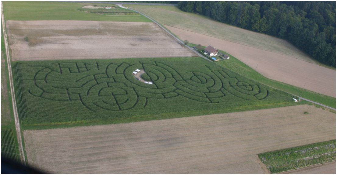 Labyrinthe photo