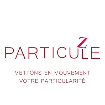 particule z